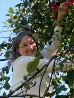 Helen picking apples