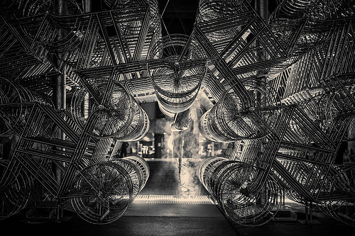 Forever Bicycles Photo by Ashton Pal